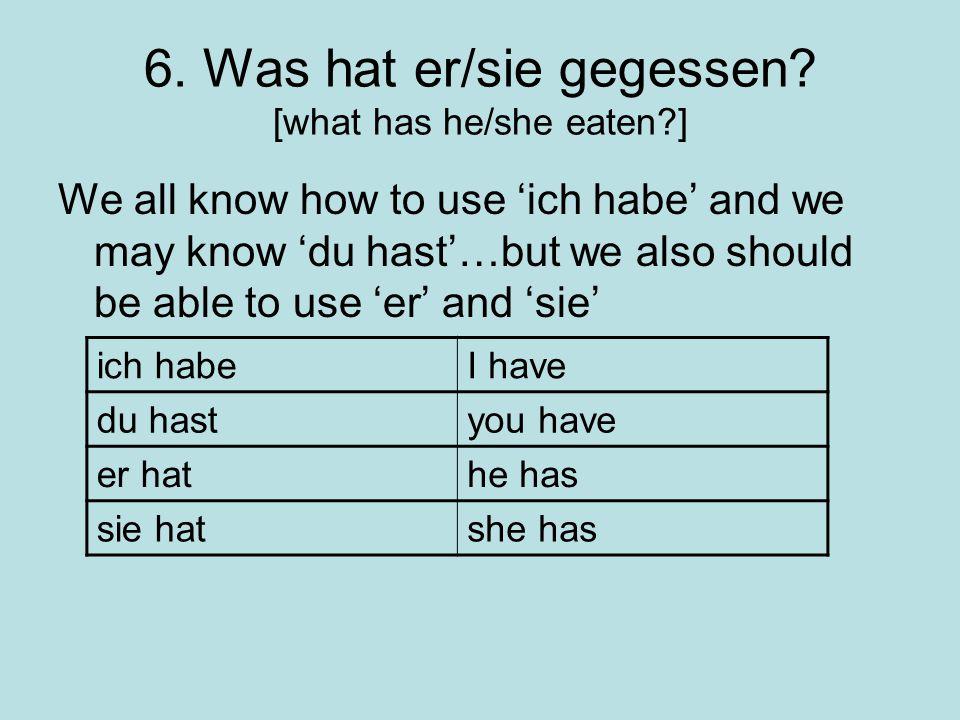 6. Was hat er/sie gegessen [what has he/she eaten ]
